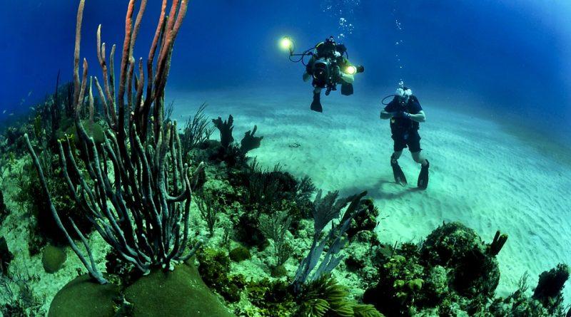 V jakých destinacích zažijete nezapomenutelné potápění?